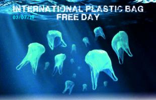 Dia sense plàstic