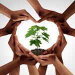 Què pot fer una persona contra el canvi climàtic?