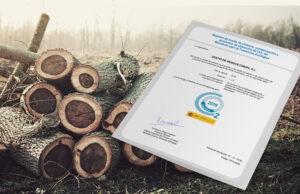 Empremta del carboni