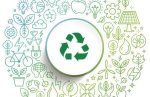 Gestión de residuos y más: consejos para una empresa sostenible