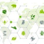 5 claus per a defensar la biodiversitat des de la gestió de residus