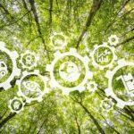 Contaminación y responsabilidad: la huella de carbono