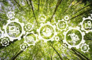 COVID-19 i Objectius de Desenvolupament Sostenible: un revés… i una oportunitat